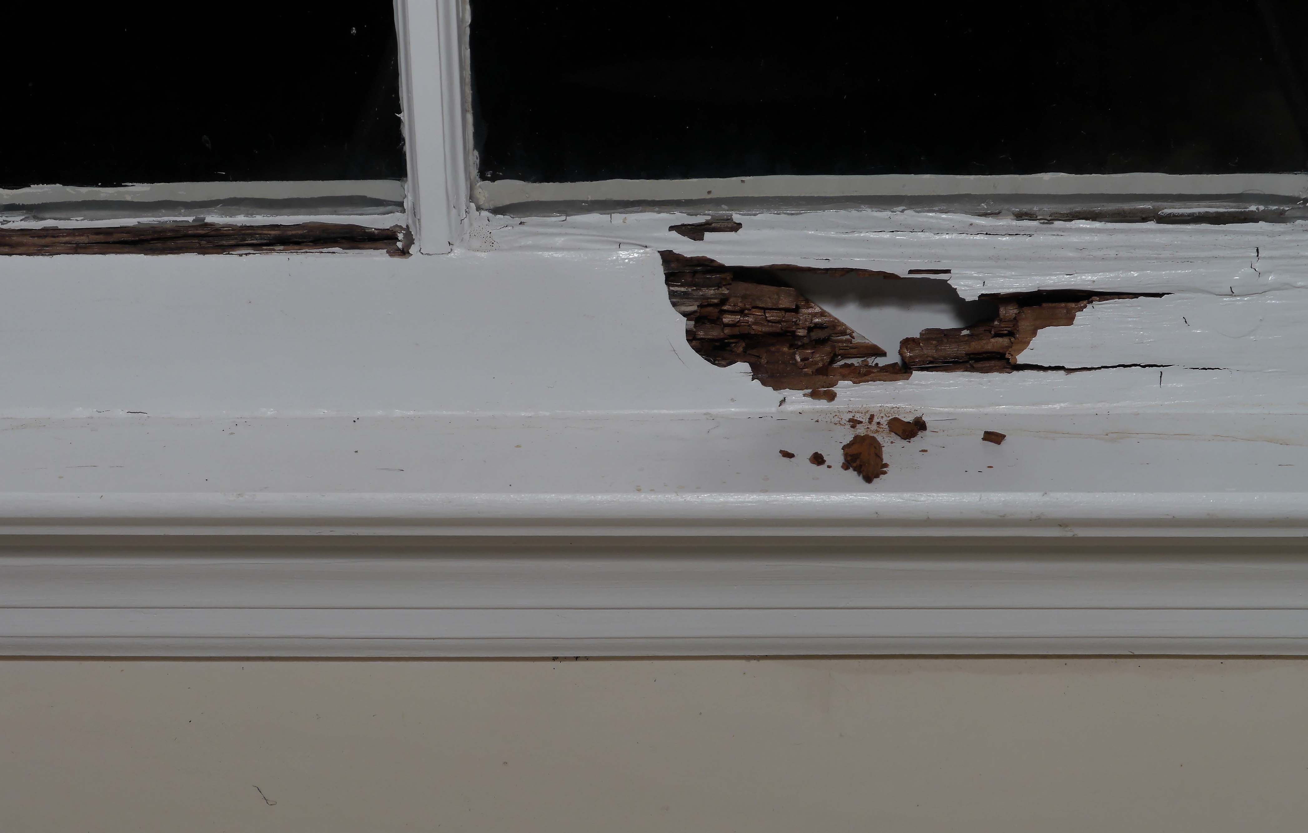 Repair A Rotted Window Sill Self Made Homes
