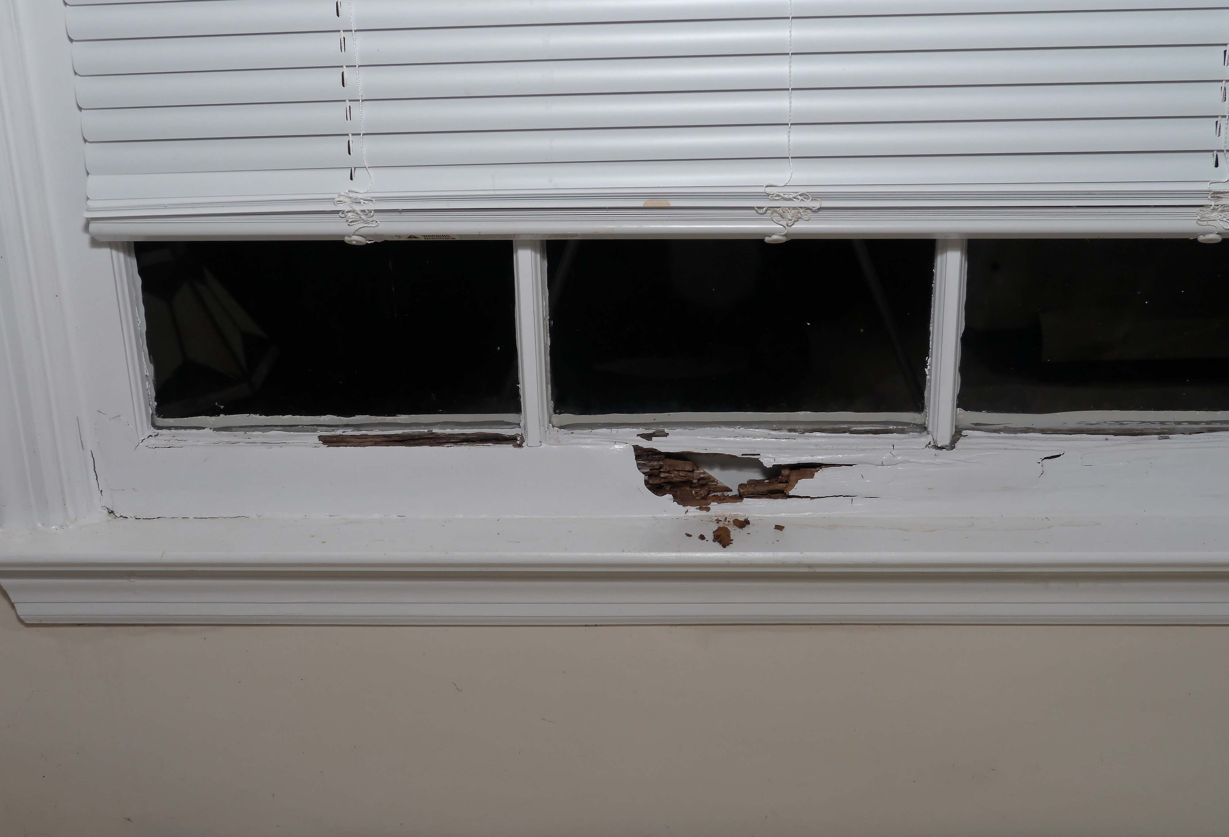 Repair a rotted window sill self made homes for Window sill replacement
